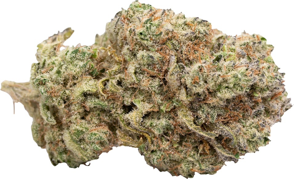 Queso Perro Flower Flower Indica Dominant